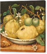 Still Life With Bowl Of Citrons Canvas Print