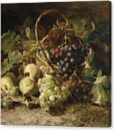 Still-life With Grapes And Pears Canvas Print