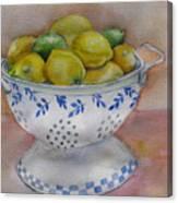 Still Life With Lemons Canvas Print