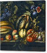 Still Life With Melons Apples Cherries Figs And Grapes On A Stone Ledge Canvas Print