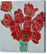 Still Life With Open Red Tulips Canvas Print