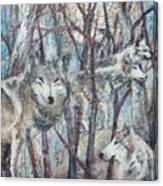 Still Of The Night Canvas Print