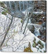 Still Under A Blanket Of Snow In Early May Canvas Print