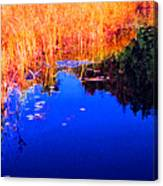Still Water Beside The Forest 3 Ae32  Canvas Print