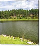 Stockade Lake In Custer State Park Canvas Print