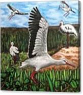 Stoks2 Canvas Print