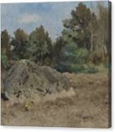 Stone Of The Field Canvas Print