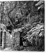 Stone Stairway Along The Wissahickon Creek In Black And White Canvas Print