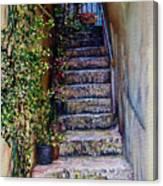 Stone Steps Canvas Print