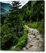 Stone Walkway Into The Valley Canvas Print
