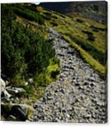Stone Walkway Towards The Pointed Peak Canvas Print