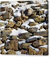 Stones And Snow Canvas Print