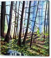Stoneybrook Canvas Print