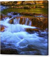 Stony Creek Jefferson National Forest Canvas Print