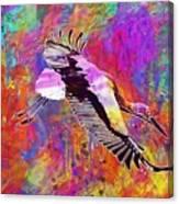 Stork Fly Elegant Feather Bird  Canvas Print