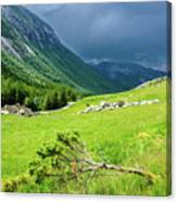 Storm Approaching Over Beautiful Green Field In Norway Canvas Print