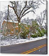 Storm Damage 1  Canvas Print
