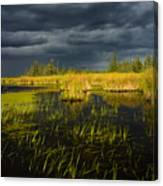 Storm Light At Patten Lake #1 Canvas Print