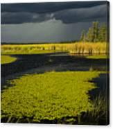 Storm Light At Patten Lake #2 Canvas Print