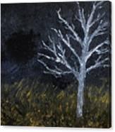 Storm Night Canvas Print