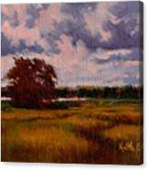 Storm Over Marshes Canvas Print