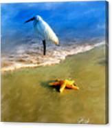 Storm Watcher Canvas Print