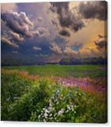 Storms A Comin Canvas Print