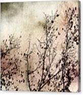 Stormy Autumn - Nature Art Canvas Print