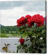 Stormy Roses Canvas Print