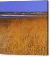 Stormy Walk On The Beach Ix Long Beach Washington Canvas Print