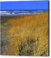 Stormy Walk On The Beach V Long Beach Washington Canvas Print