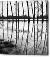 Stranded Trees II Canvas Print