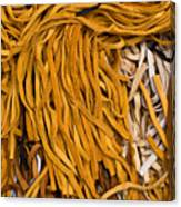 Strands Of Gold Canvas Print
