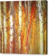 Strange Forest Canvas Print
