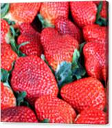 Strawberries 8 X 10 Canvas Print