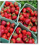 Strawberries In A Box On The Green Grass Canvas Print