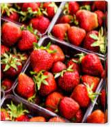 Strawberries With Green Weed In Plastic Containers  Canvas Print