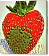 Strawberry Dreams Canvas Print