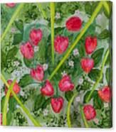 Strawberry Love Patch Canvas Print