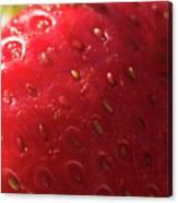 Strawberry Macro Canvas Print
