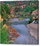 Stream And Fall Color In Central California Canvas Print
