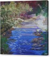 Stream At Yosemite Canvas Print