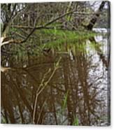 Stream Entering Mississippi River Canvas Print