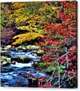 Stream In Autumn Canvas Print