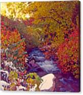 Stream In Autumn  Canvas Print