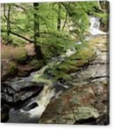 Stream In The Irish Countryside Canvas Print