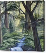 Stream In The Low Country Canvas Print