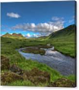 Stream South Iceland Canvas Print