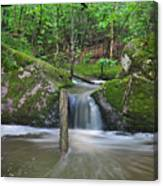 Stream Waterfall Canvas Print