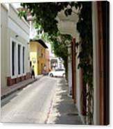 Street In Colombia Canvas Print